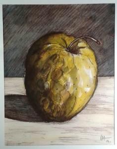 Pomme (II) - 2014 - Aquarelle/Crayon